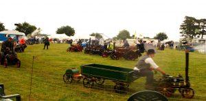 Model tractors in Ring 2